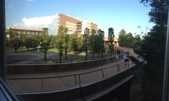 The lovely view from the second floor of the main lecture building; how cool is the circular yellow brick road!!