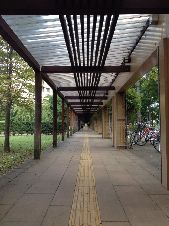 The covered walkway down the long road between the halls and the main campus :)