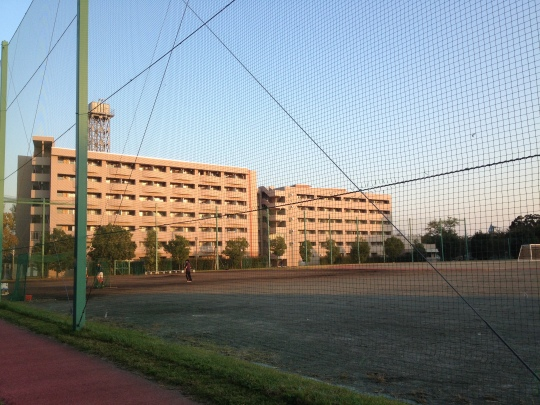 The dorms from the sports field