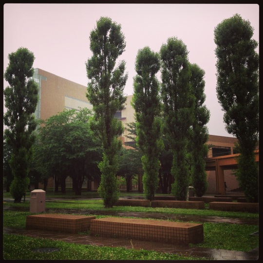It's currently the rainy season here! The campus is lovely in the rain :)