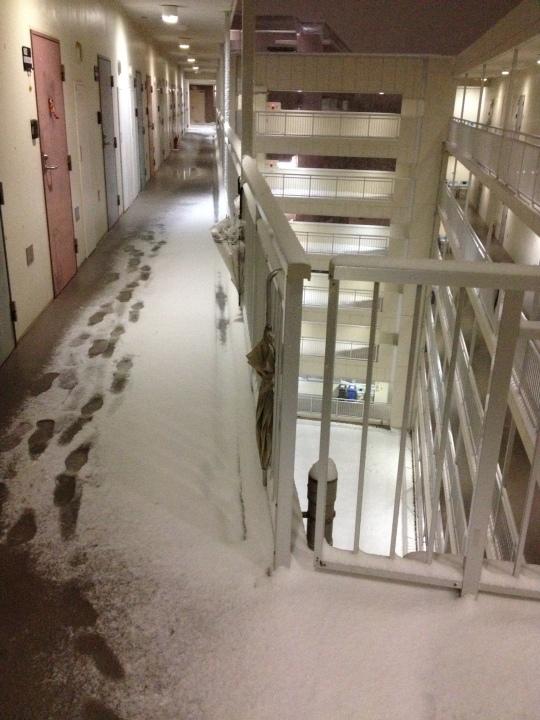 I hate not having my own shower... walking through this in flip-flops is treacherous!