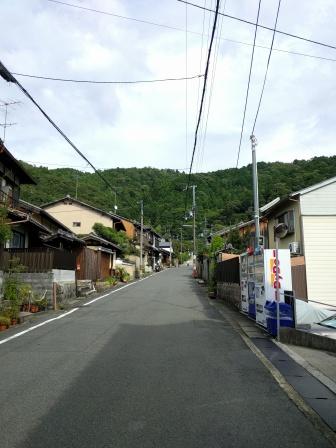 Japan scenery is pretty cool.